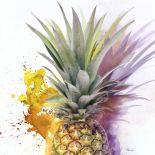 Pineapple Art Plain