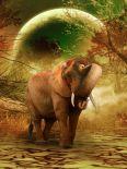 The Elephant Ricardo 2