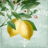 Lemon Drop 2