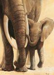 Elephant Love I