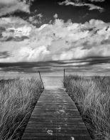 17894_d_Oak Bluffs Beach Path Crop_thumb.jpg