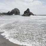 36196_a_Harris Beach Oregon Crop_thumb.jpg