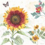 65345_a_Sunflower Splendor VII_thumb.jpg