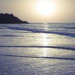 AF20101222 Sea 031C02.jpg